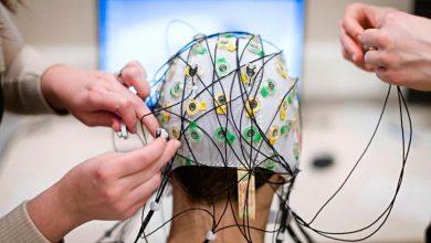 تصویر از نرم افزار EEG LAB